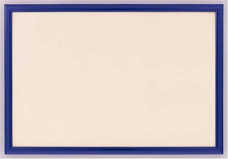 Jigsaw panel N Woody EX Shine bluee (49x72cm)