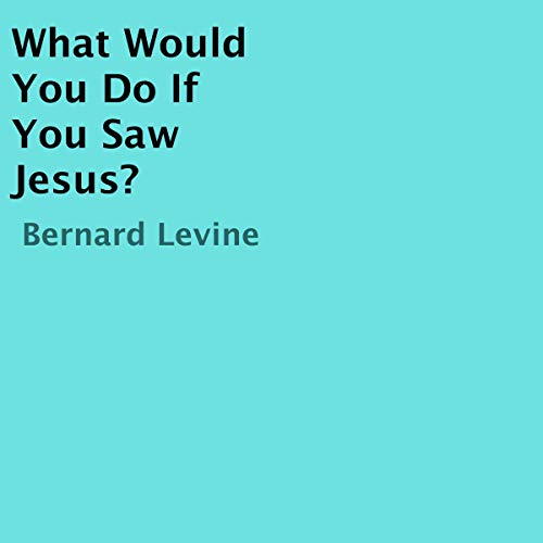 What Would You Do If You Saw Jesus?  By  cover art