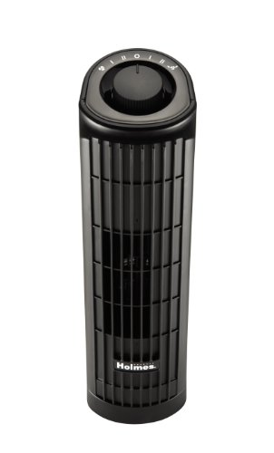 Holmes HTF1363B-BU 2-Speed Oscillating Mini Tower Fan, 14-Inch