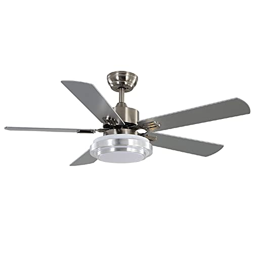 warmiplanet Ceiling Fan with Lights Remote Control, 52 Inch,...