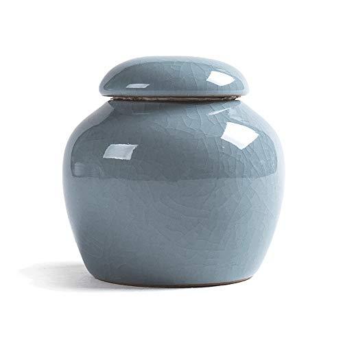 KnocKconK Mini Pet urn, Small Ceramic Ash Funeral Burial Box, Cremation Keepsake for Small Animals, Bird, Reptile, Rabbit, Hamster, Galesasur, Forever Memorials(Blue, Green, Cyan) (Blue)