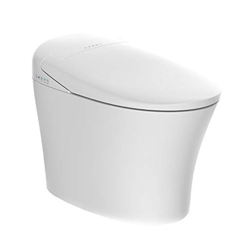 Mecor Intelligent Smart Toilet, Massage Washing, Auto Flush,Heated Seat with Integrated Multi Function Remote Control, With Advance Bidet And Soft Closing Seat,Smart Bidet(TA-858ZD)