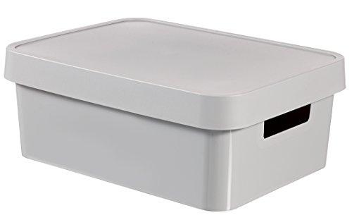 CURVER 04752-099-00 Boîte à Rangement Infinity avec Couvercle 11L en Gris Clair, Plastique, 36,3x27x22,2 cm