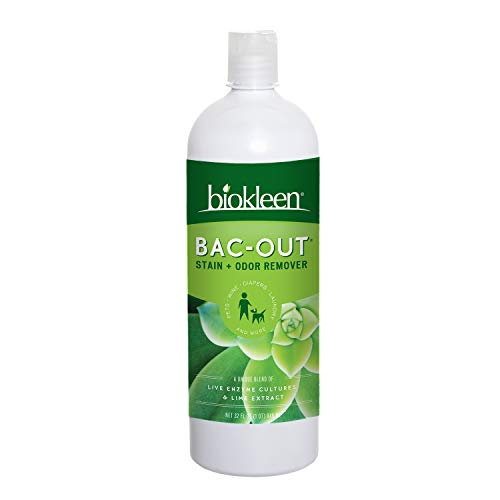 Biokleen Bac-Out Stain+Odor Remover, Destroys Stains & Odors Safely, for Pet Urine, Laundry, Diapers, Wine, Carpets, & More, Eco-Friendly, Non-Toxic, Plant-Based, 32 fl oz (Pack of 12)