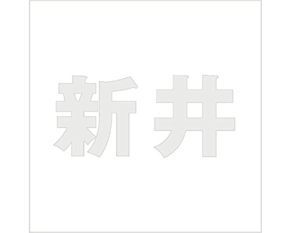 インチ常に四切文字 カッティングシート ゴシック文字 ???????? 100×100mm表札板用 新井 オーダーメイド 納期8営業日