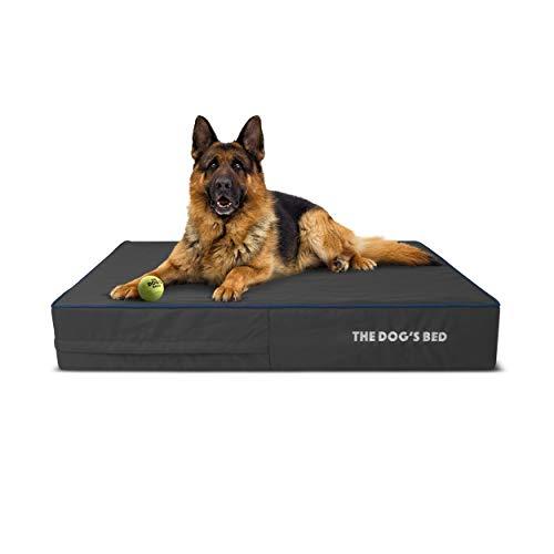 The Dog's Bed Orthopädisches Hundebett, Größe L, Grau mit dunkelblauem Rand, 101 x 64 cm, Premium wasserdichter Memory-Schaum Hundebett
