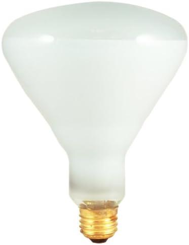 65W Incandescent BR40 Indoor Reflector Clear in Light Dallas Mall Atlanta Mall Flood Bulb