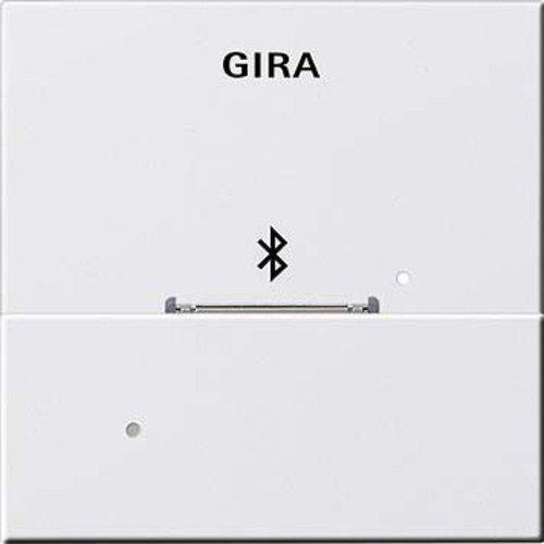 GIRA 2868730 Dockingstation Apple 30 PIN, RWS 228603