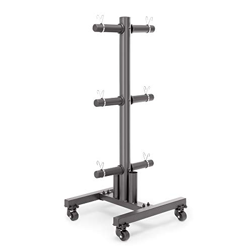 Eapele Barbell Storage Holder for Olympic Bars EZ-Bars Trap Bars 5 Bars