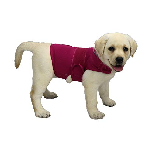 YESTAR Comfort Dog Anxiety Relief Coat, Dog Thunder Vest Calming Anxiety Wrap, Reduce Stress Thunder Jacket Shirts for Dogs(Rose S)