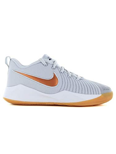 Nike Team Hustle Quick 2, Zapatillas de Baloncesto Unisex niño, Multicolor (Pure Platinum/Metallic Copper/Wolf Grey 006), 37.5 EU