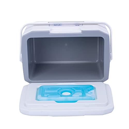 Nevera portátil portátil de 6 l para la limpieza de la parrilla al aire libre