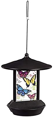 Evergreen Garden Butterfly Flight Glass and Plastic Hanging Solar Bird Feeder