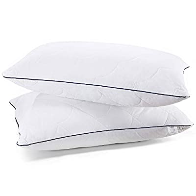 Sable 2 Pack Bed Pillows for Sleeping BD013
