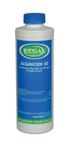Regal 32 oz Algaecide 60%