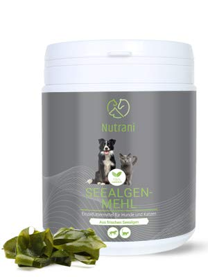 Nutrani Seealgenmehl für Hunde und Katzen | 500 g – 100% natürliches Pulver von der Seealge (Ascophyllum nodosum) – Versorgt mit wichtigen Mineralien, Spurenelementen, Aminosäuren, Jod und Zink