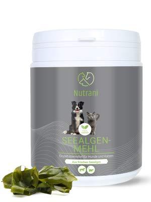 Nutrani Seealgenmehl für Hunde und Katzen | 500 g – 100% natürliches Pulver von...