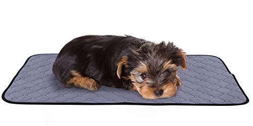 Pecute Almohadillas de Entrenamiento para Perros Pañales de Perro Lavable Ultraabsorbente Reutilizables Empapadores Toallitas de Entrenamiento para Mascotas Antideslizante Impermeable 2 PCS M 70x50cm