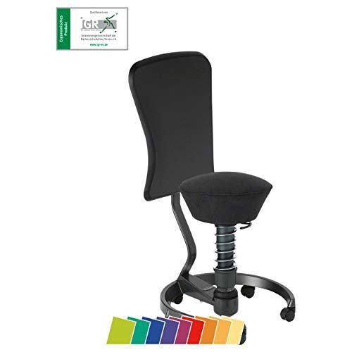 aeris swopper WORK ergonomischer Bürostuhl mit Rollen | Sitzbezug Mikrofaser Schwarz | Feder medium...