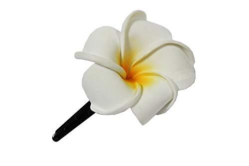 Naturesco Exotische Haarklemme Haarclip Blüte Frangipani weiß 8cm lang, 6x6cm