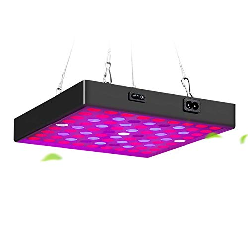 HYDL Lámpara de Cultivo de Plantas 80W, Leds Grow Light Espectro Completo LED Lámpara de Crecimiento, para Plantas Crecimiento Floracion Armario Cultivo