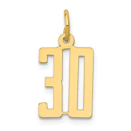 14K Yellow Gold Small Polished Elongated 30 Charm