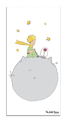 Panorama Tappeto Vinile Il Piccolo Principe Rosa 80x150 cm - Tappeto Bambini Il Piccolo Principe - Tappeto Moderno Salotto - Tappeto Cucina - Tappeto Grande PVC