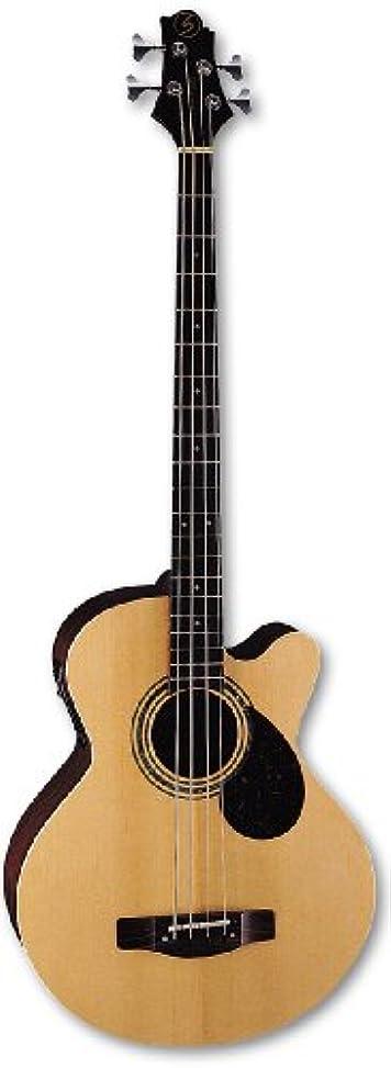 ミシン目雄弁な高めるSamick AB2 - Natural 4-string Regency Acoustic Bass ケース付き アコースティックギター アコギ ギター (並行輸入)