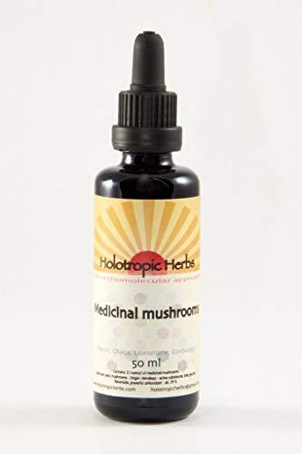 Medicinal mushrooms tinktur 50 ml