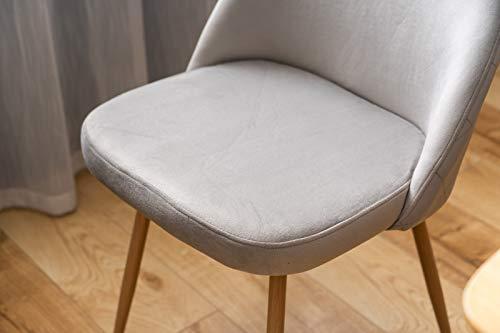 PovKeever Esszimmerstühle 2er Set Küchenstuhl Polsterstuhl Wohnzimmerstuhl Sessel mit Rückenlehne, Sitzfläche aus Samt, Metallbeine