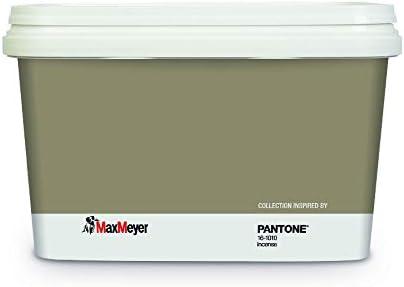 Maxmeyer Pittura Pantone 2 Lt 161010 Incense Colorata Amazon It Fai Da Te