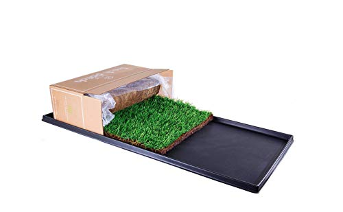 Fresh Patch XL Bundle - Real Grass Pee and Potty Training Pad and Plastic Tray for Multi-Dog Households - Indoor and Outdoor Use - 48 Inches x 24 Inches