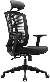Rongbuk Ergonomic High Mesh Back Computer Chair