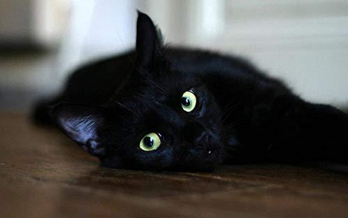 AMTTGOYY Pussel för vuxna 1000 bitar Svart katt som ligger på bordet Barn Konst Diy Fritid Spel Kul Leksak Present Lämplig familjevän