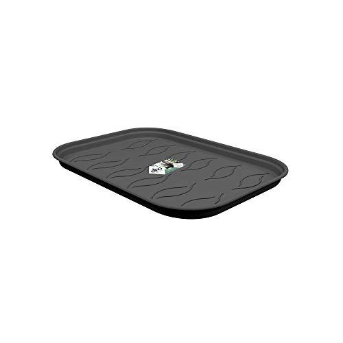 Elho Green Basics Anzucht Untersetzer M - Lebhaft Schwarz - Drinnen & Draußen - Ø 25.6 x H 2.2 cm