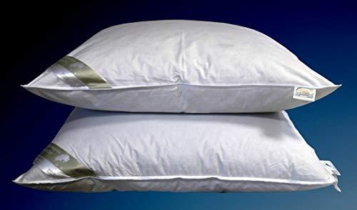 Hofmann´s Premium Royal Night Kissen Kopfkissen 80x80 cm Federkissen 15% Daunen
