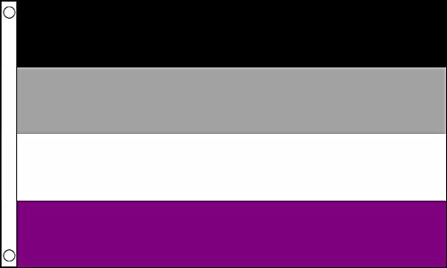 5ft x 3ft (150 x 90 cm) Asexual Asexuality Gay Pride 100% Polyester Material Flag Banner Ideal For Pub Club School Festival Business Party Decoration by UKFlagShop
