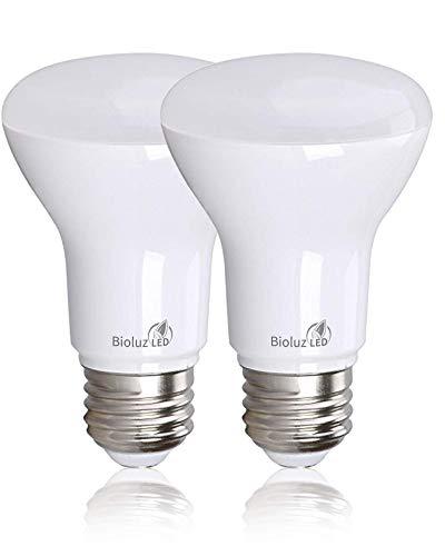 See the TOP 10 Best<br>50 Watt Outdoor Flood Light Bulbs