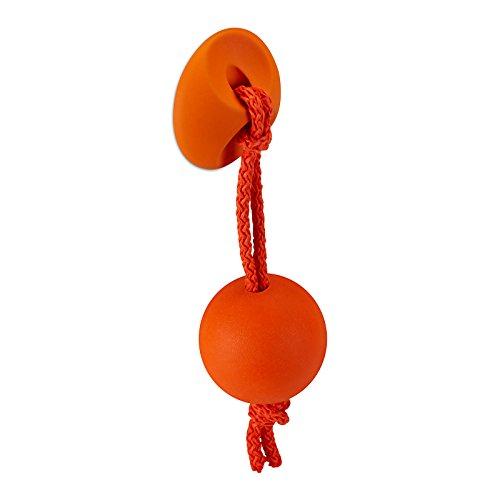 Kindermöbelknopf CHAMÄLEON orange Kinderknopf Möbelknopf Schubladenknopf von SO-TECH®