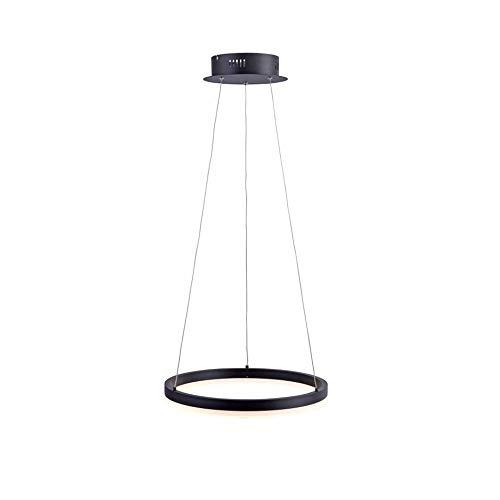 LED Pendelleuchte Ø 40cm TITUS 2381-13 Paul Neuhaus