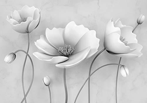 wandmotiv24 Fototapete Graue Blumen XL 350 x 245 cm - 7 Teile Fototapeten, Wandbild, Motivtapeten, Vlies-Tapeten Blüten, Beton, 3D M1865