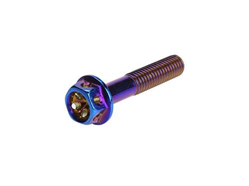 M8×20mm フラワー ヘッド ボルト ステンレス 削り出し フランジボルト フレーム周辺やハンドルなどに 焼チタンカラー TB0566