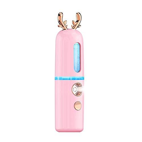 LINDO USB NANO MIST MISM PRIGHTER FACIENTE CUERPO NEBUBULINE NEBULINERO SOVERSIÓN DE LA PIEL DE LA PIEL MINI MINI FACE SPRAY DISPOSITIVO DE INSTRUMENTOS DE LA BELLEZA (Color : Pink)