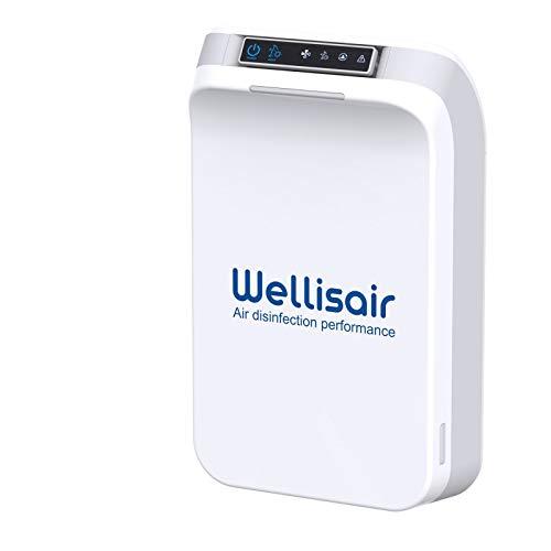 Wellisair Purificador de aire y desinfectante de ambiente automático.