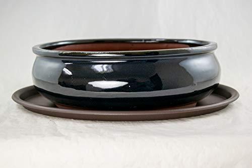 Oval Bonsai / Succulent Pot 9.75'x 7.5'x 3.25' + Tray + Mesh - Navy Blue Stain