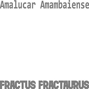 Amalucar Amambaiense