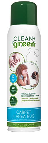 Clean+Green Carpet Cleaner Natural Stain and Odor Remover, Deep Clean Your Carpeted Floors with This Multi Purpose Spray- Safe for Pets, People and Environment, 14-Ounce., Made in the USA