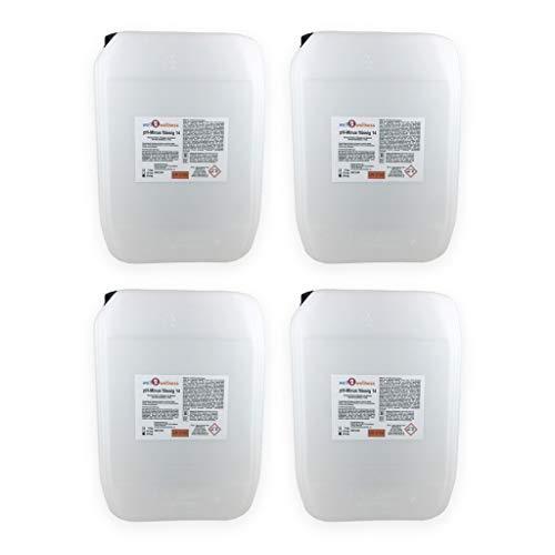 well2wellness Pool pH Minus flüssig 14 / pH Senker flüssig - 4 x 22 kg Kanister
