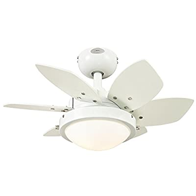 Westinghouse Lighting 7247100 Quince Two-Light Reversible Six-Blade Indoor Ceiling Fan, 24-Inch, White Finish with Opal Frosted Glass