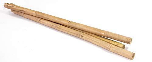 Rococo Tronco de Bambú Natural de 2 Metros (Entre 6 y 11cm de Ø)